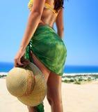Férias tropicas Imagem de Stock Royalty Free