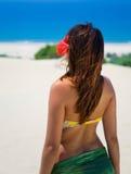 Férias tropicas Fotos de Stock Royalty Free