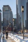 A fêmea anda cão no inverno em Boston Imagem de Stock Royalty Free