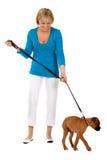 Fêmea atrativa com cão Foto de Stock Royalty Free