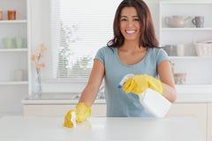 Fêmea bonita que faz o housework foto de stock royalty free