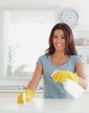 Fêmea Charming que faz o housework imagem de stock