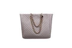 Fêmea cinzenta bag-2 Foto de Stock
