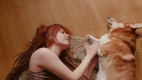 Fêmea com cão do corgi video estoque