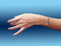 Fêmea da mão com horas Imagem de Stock