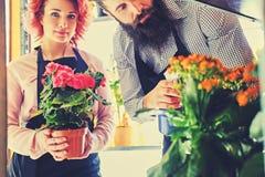 A fêmea do ruivo guarda um potenciômetro com rosas e o homem tattooed farpado Fotos de Stock Royalty Free