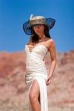 Fêmea elegante que desgasta o vestido lindo fotos de stock