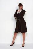 Fêmea moderna do CEO Fotografia de Stock