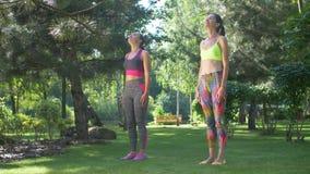 Fêmeas aptas que esticam o pescoço, aquecendo os músculos video estoque