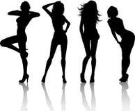 Fêmeas 'sexy' Fotografia de Stock