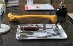 Fêmur humano artificial e grupo de ferramentas cirúrgico no worktop do laboratório imagem de stock