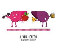 Fígado saudável e caráter insalubre do fígado ilustração do vetor