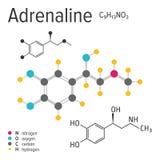 Fórmula química de la molécula de la adrenalina del vector ilustración del vector
