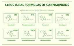 Fórmulas estructurales de infographic horizontal de los cannabinoids naturales principales stock de ilustración