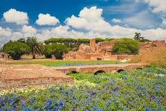 Fórum Romanum - jardins de Palatinum, Roma Fotos de Stock