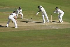 Fósforo da excursão do críquete de Sussex v Austrália Imagem de Stock Royalty Free