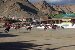 Fósforo do polo em Ladakh festifal Fotos de Stock Royalty Free