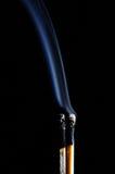 Fósforo inflamado e fósforo purgado Imagens de Stock Royalty Free