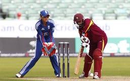 Fósforo internacional do grilo do T20 das mulheres das Índias Ocidentais de Inglaterra v Imagens de Stock Royalty Free