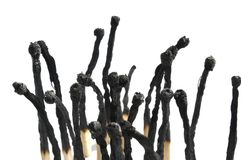 Fósforos queimados no fundo branco Fotografia de Stock Royalty Free
