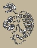 Fósil de dinosaurio Imagen de archivo