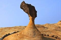 Fósil del viento imagenes de archivo