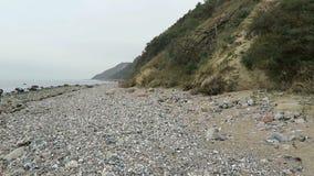 Fósil que busca en la playa de la costa Mecklemburgo-Pomerania Occidental, Alemania de la isla de Hiddensee almacen de metraje de vídeo