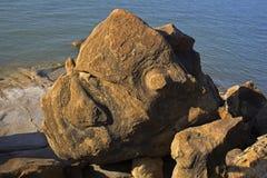 Fósiles antiguos en Kutch, Imagen de archivo
