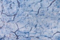 Fósiles en piedra como fondo abstracto Fotos de archivo libres de regalías