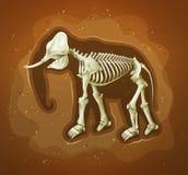 Fóssil de um mamoth lanoso ilustração royalty free