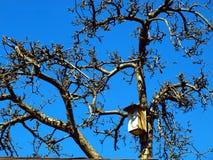 Föda upp skjul för fåglar Arkivfoto