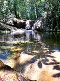 Född flod Royaltyfri Foto