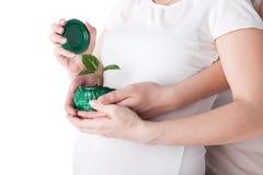 födelsebegrepp Arkivfoto