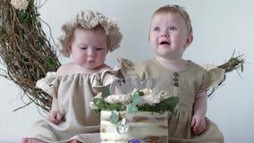 Födelsedagen handlag för små systrar bakar ihop med händer sitter i klänningar på fotofors i studio lager videofilmer