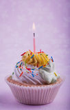 Födelsedagmuffin med stearinljuset, på rosa färgerna Royaltyfri Foto