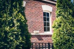 Fönster av en forntida byggnad till och med thuja royaltyfri bild