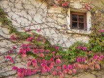 Fönster av ett gammalt vitt hus på den medeltida byn Perouges med c Royaltyfria Foton