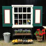 Fönster, blommor och clogs Royaltyfria Bilder
