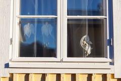Fönster för Ð-¡ hristmas med garnering Arkivfoton