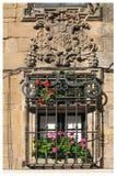 fönster för compostelade santiago Royaltyfri Fotografi