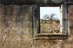 fönster för natur ii Royaltyfri Fotografi