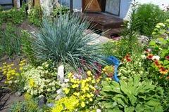 fönster för textur för bakgrundsdetalj trägammalt Gräs och blommor royaltyfri fotografi