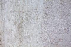 fönster för textur för bakgrundsdetalj trägammalt Arkivfoton