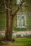 Fönster i gammalt trägrönt hus i by på sommar med trädet beside arkivfoto