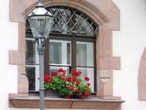 Fönster i höst Royaltyfri Bild
