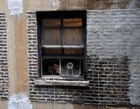 Fönster i nedskärningbyggnad Arkivfoto