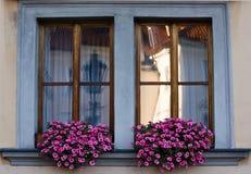 Fönster i Prague Arkivbilder