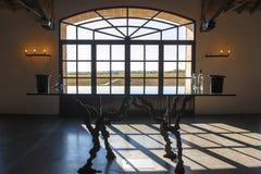 Fönster i vinkällaren Bordeaux Royaltyfri Bild