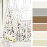 Fönster i vinter och blommor av en fönsterbräda arkivfoton