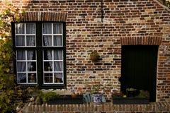fönster ii royaltyfria bilder